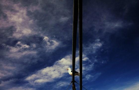 Fin del Invierno en el puerto de Punta del Este 102 - copia
