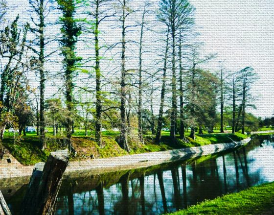 cropped-paisaje-en-tela1.jpg